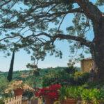 Agriturismo Uliveto Saglietto: aria di pace tra le colline di Imperia